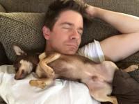 nap_dog